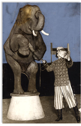 billy sunday, trained elephant